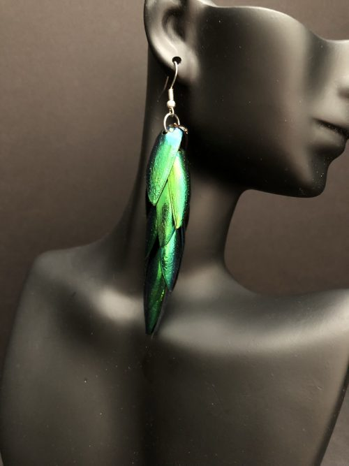 Elytra earrings, by Cashmere and Pearls